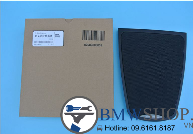 cover HK BMW F10 copy