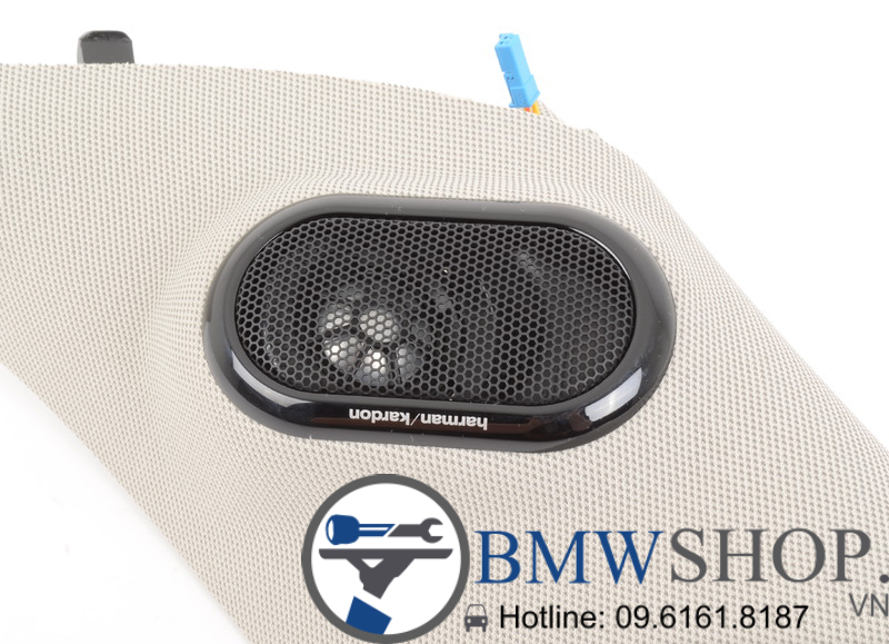 cot A harman kardon bmw mini couper5